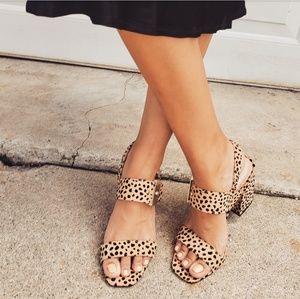 Shoes - 🆕️//The Starla// leopard print buckle chunky heel
